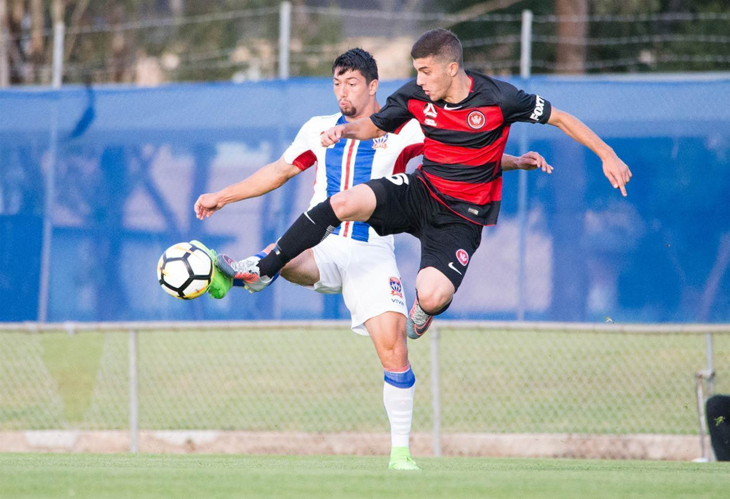 Y-League pic special: Western Sydney Wanderers v Newcastle Jets