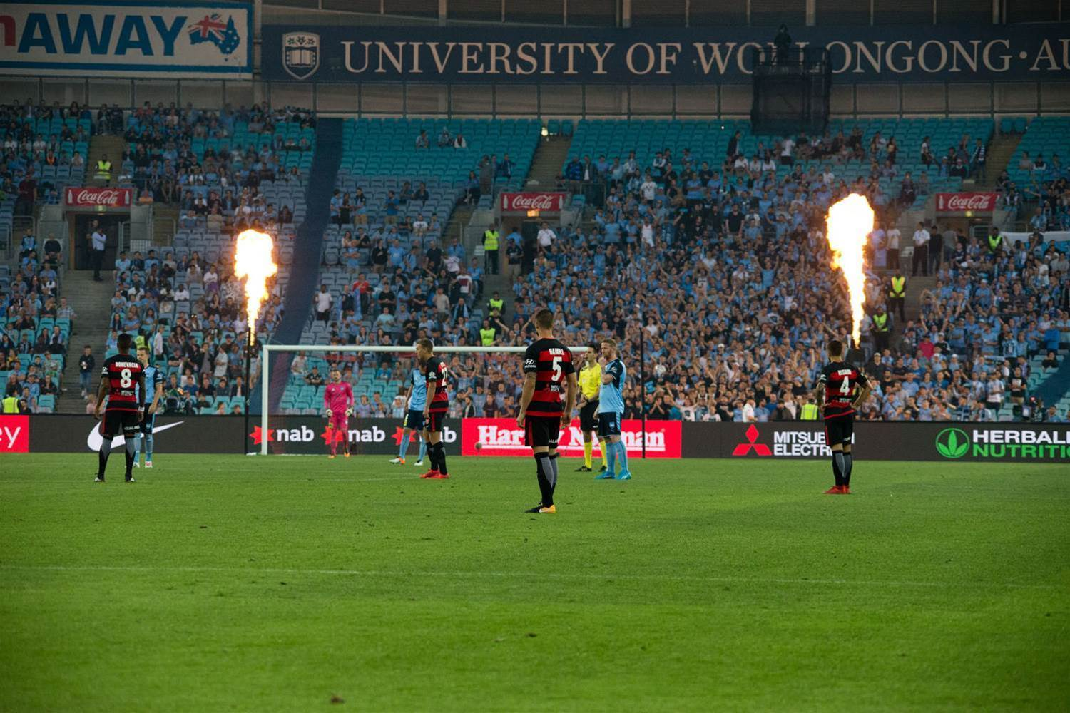 Slaughterhouse five: Sydney Derby pic special