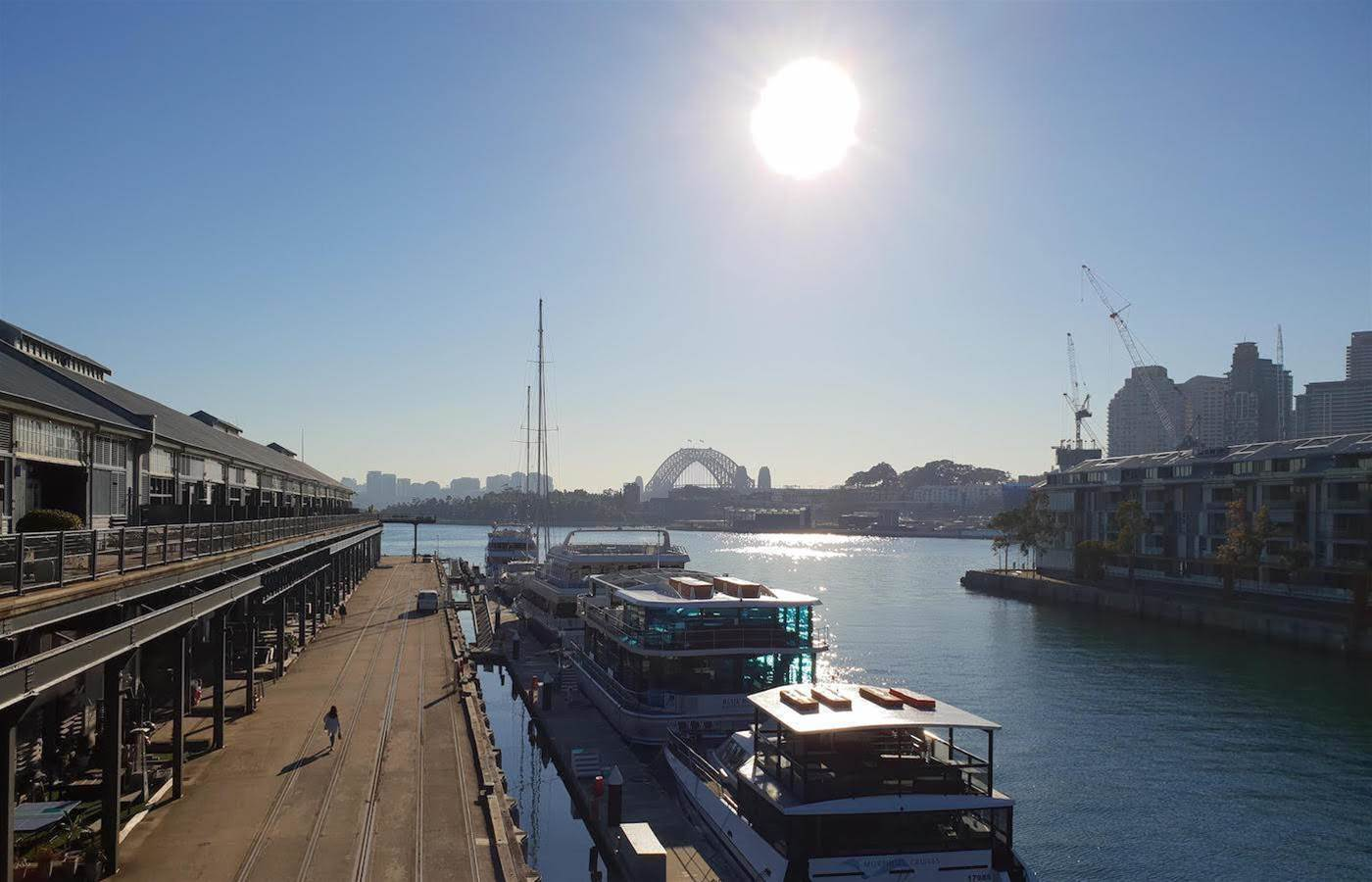 Who showed up when Sophos hit sunny Sydney?