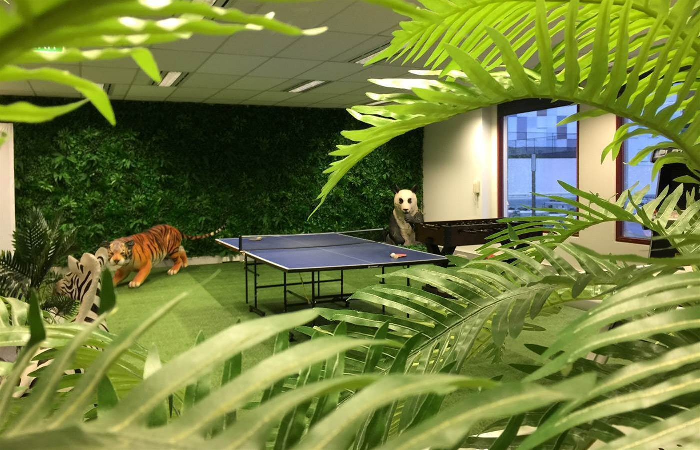 Broadband Solutions cofounder launches Jungle-themed workspace