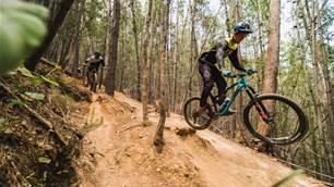 Mountain Biking in Victoria's Alpine Foothills