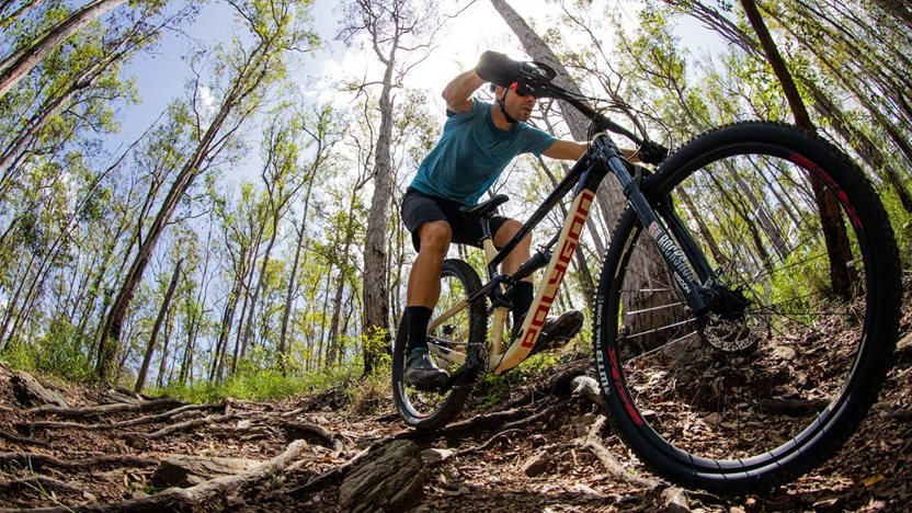 TESTED: Polygon Siskiu D7 mountain bike