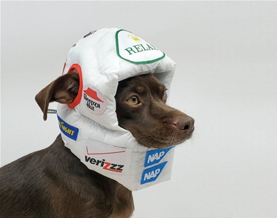 headgear for dogs who like to nap
