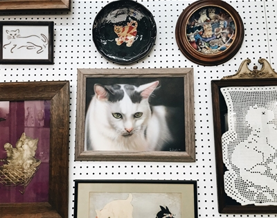 a museum dedicated to cats
