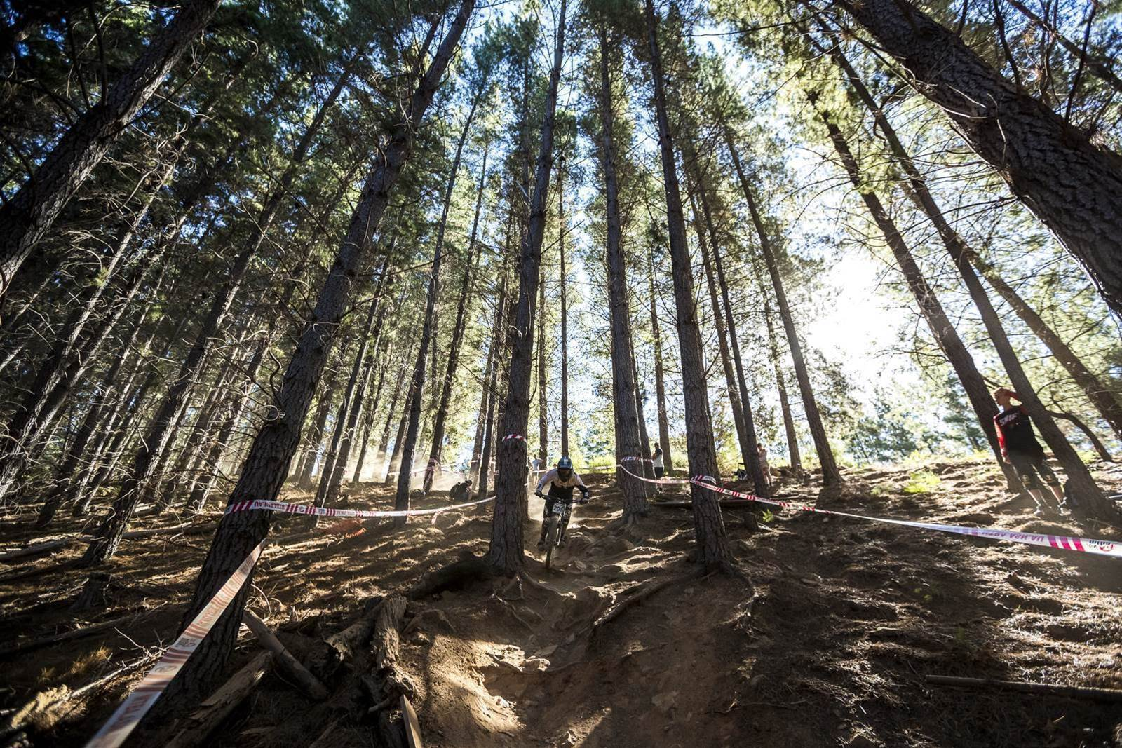 Dust trails on Dusty trails - Bright DH Champs day 2