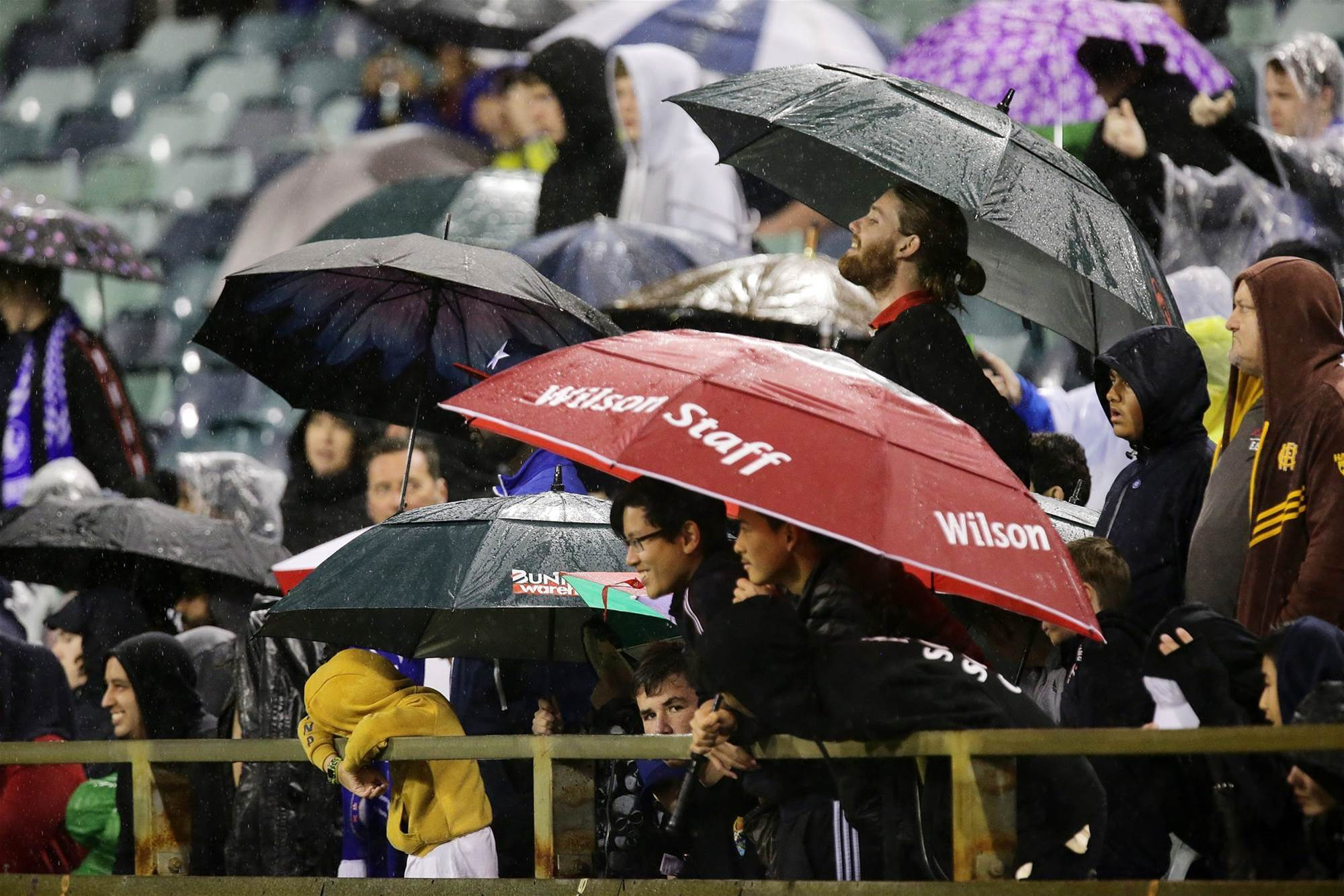Pic special: Fans brave the wet to watch Chelsea train