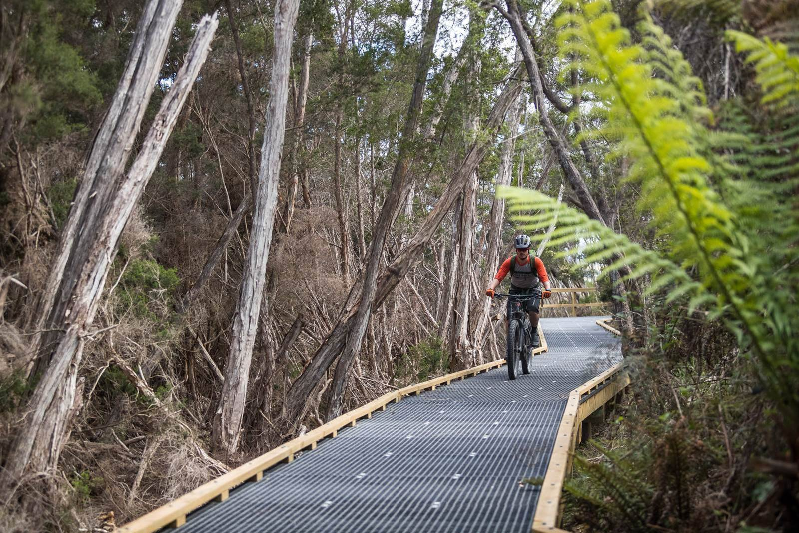 The Town Link trail is 3.8km of mixed grates and single track that takes you from town right to the trailhead.