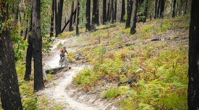 Tasmanian beach town seeks to attract mountain bikers