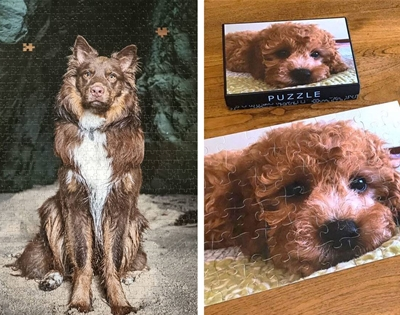 get your pet photos turned into puzzles