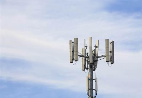 Regional fibre provider Lumea taps Ciena to upgrade network infrastructure