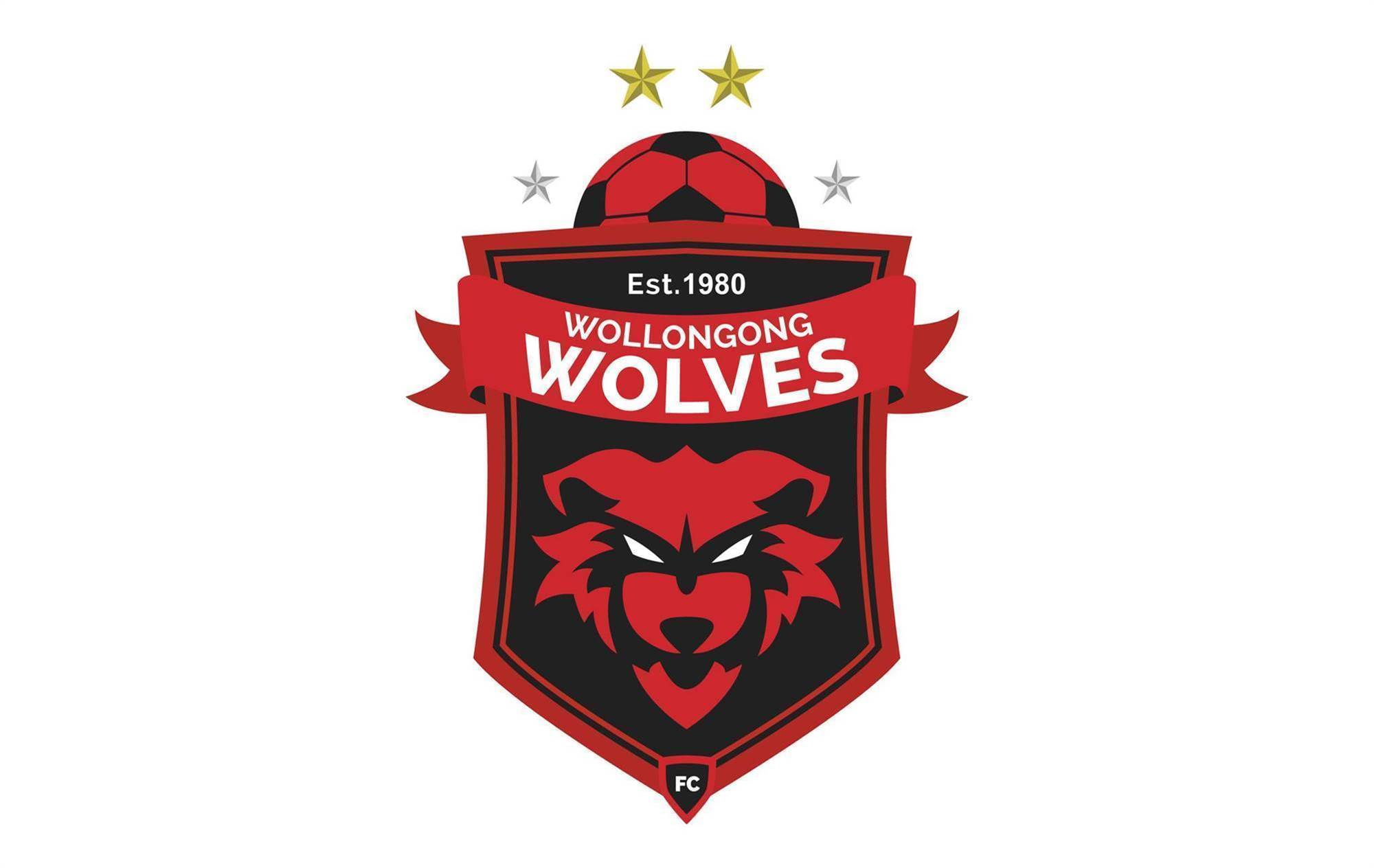 Wollongong Wolves boss quits months out from A-League decision