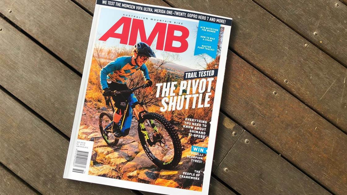 In this Issue - AMB #176