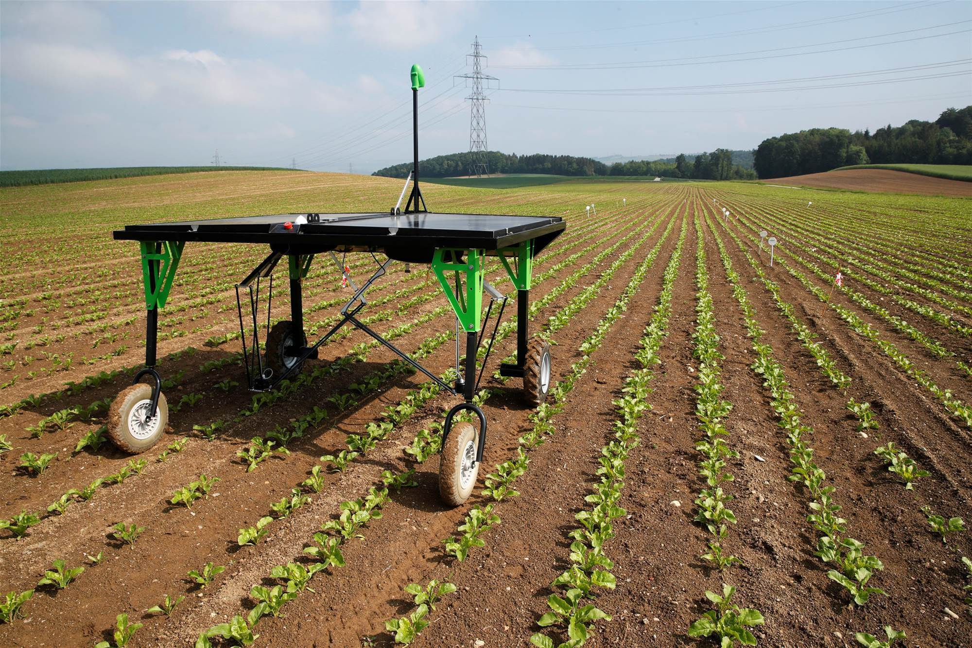 Robotic weed killers challenge fertiliser industry