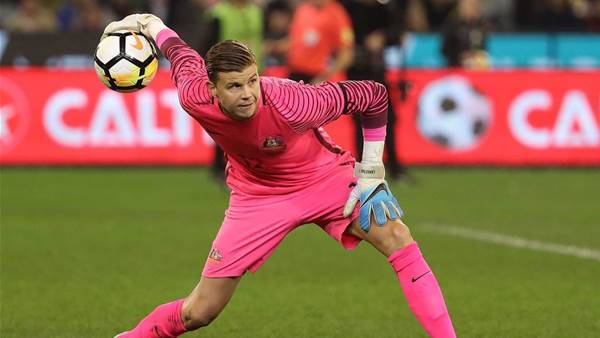 Langerak set for Japanese switch