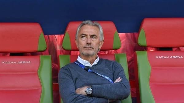 "'Everyone makes mistakes..."" - van Marwijk on ref's VAR call"