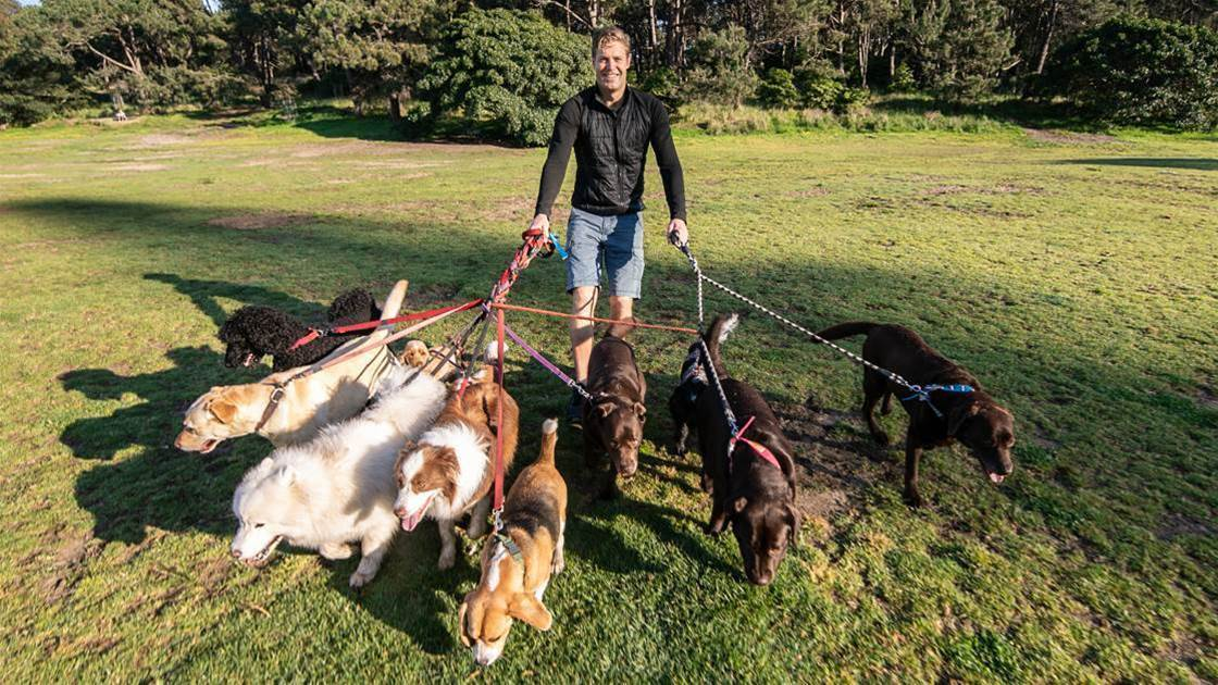 Dr Chris On The Power Of Your Pup