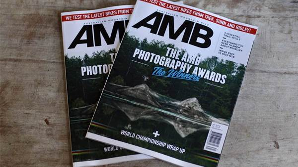 In this Issue: AMB #171