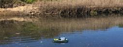 SAP straps Leonardo IoT to raft in Sydney lagoon
