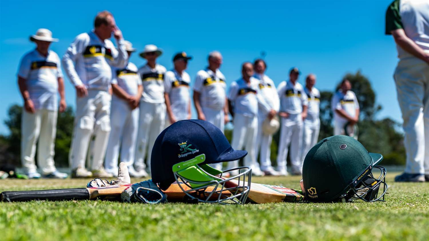 Veterans Cricket takes centre stage