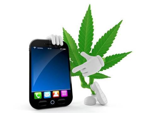 Google stubs out apps that facilitate sale of cannabis