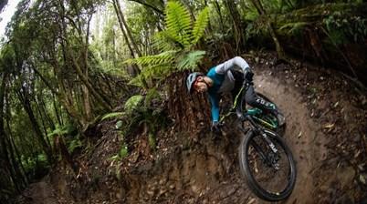 PTR: Wilderness Trail