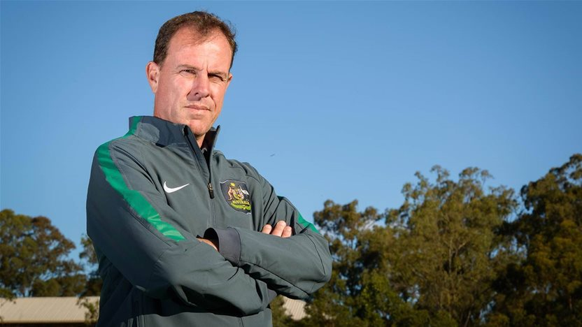 Anger as review bans Stajcic input