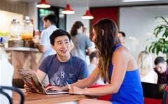 Aussie tech recruiter collapse hits Google, Gumtree