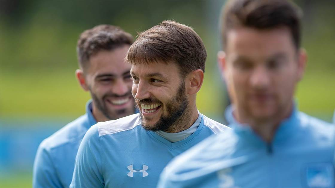 Sydney FC expect Ninkovic call next week