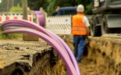 NBN daytime speeds not impacted: ACCC