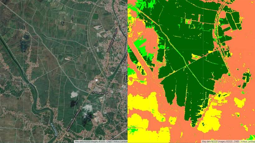 Google Earth, Sydney Uni partner for global food management initiative