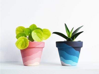 frankie exclusive diy: gradient planter pots