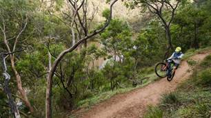 Trails in our own backyard: Yarra Trails