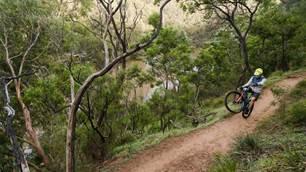 Trails in our own backyard: Yarra Trails