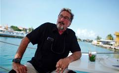 John McAfee charged with cryptocurrency fraud