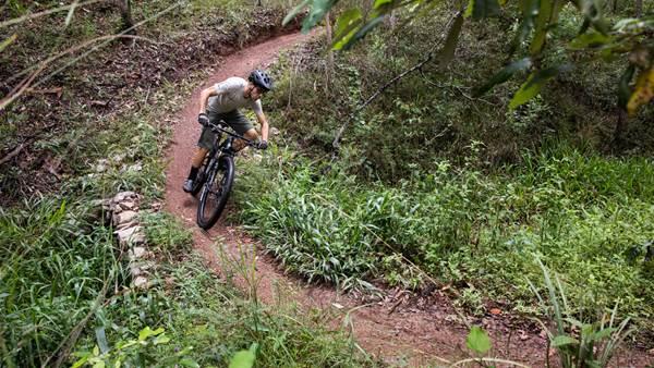 New Mountain Bike Trails in Queensland's Bunya Mountains