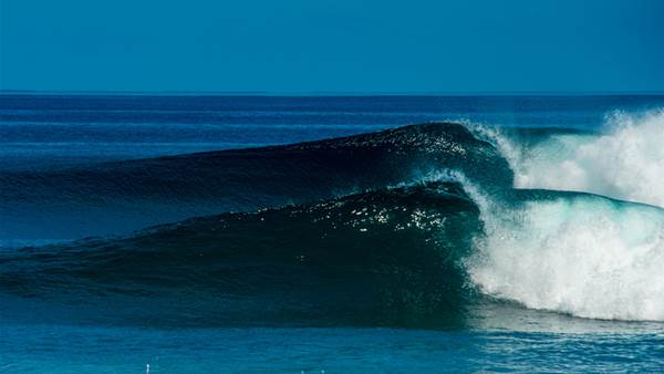 When a surfer gives up the grog