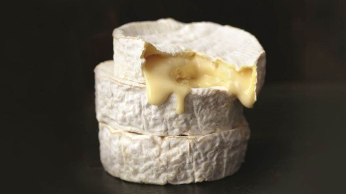 Good news! Cheese can boost your brain power