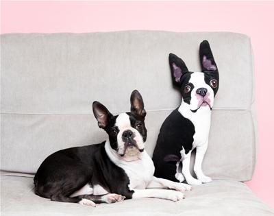 helen penny makes custom pet pillows