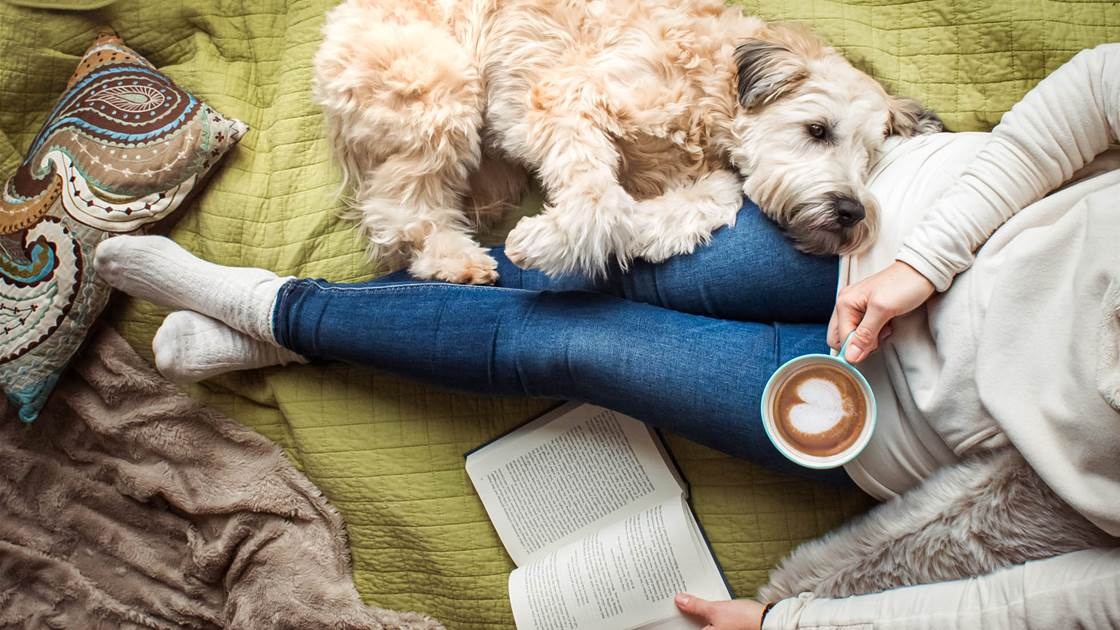 3 of the best books you need to read this winter