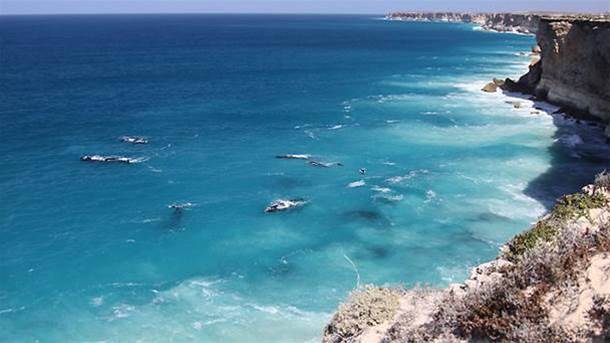 The Fight To Save The Bight