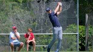 Record number of NSW Open entries