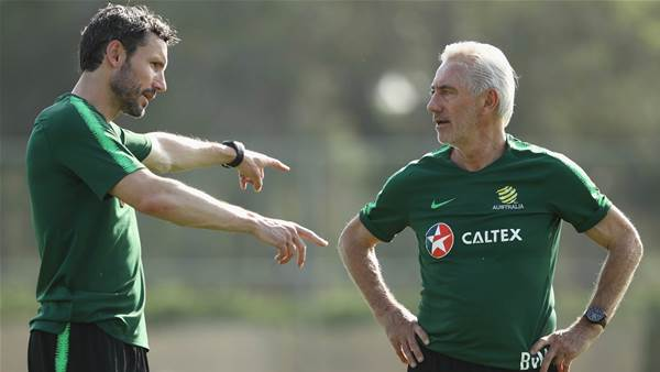 Why van Marwijk is the man for the Socceroos