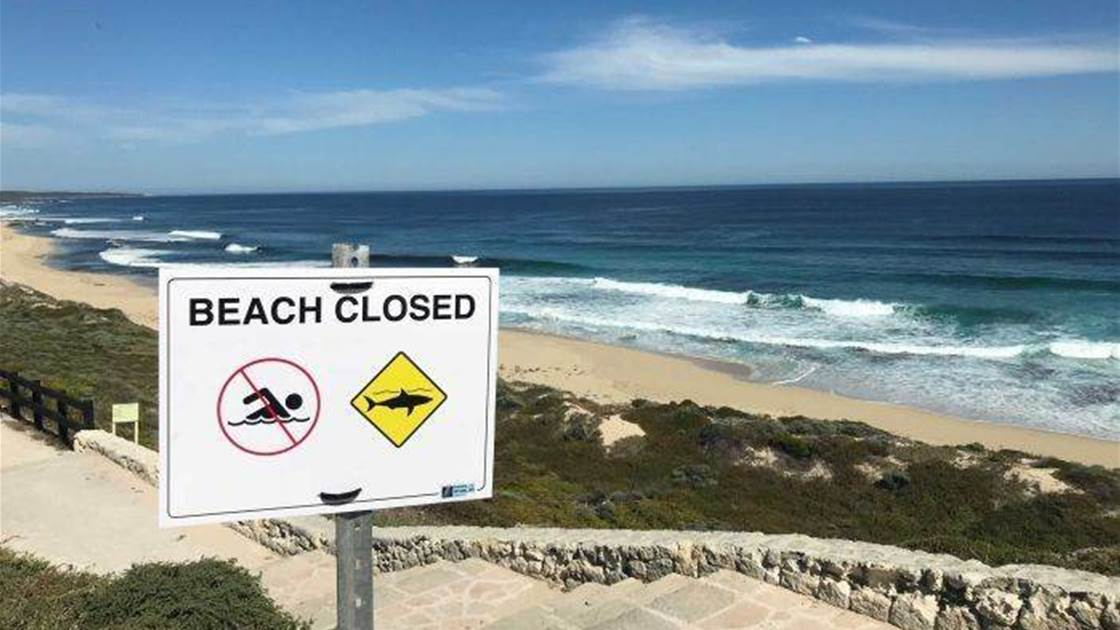 Tour Surfers Restless About the Shark Situation in WA