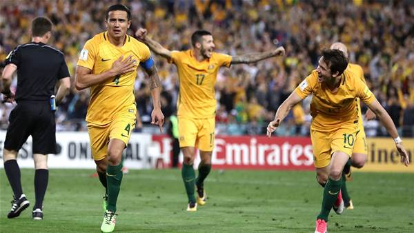 Van Marwijk: Why Cahill is still special for the Socceroos