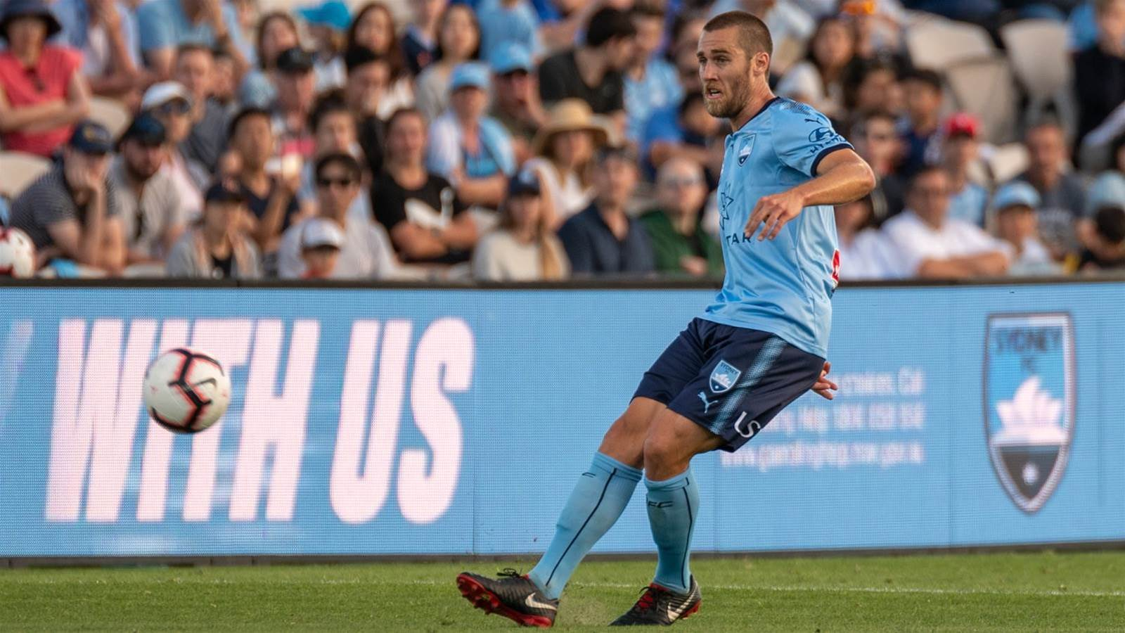 Sydney FC in talks to retain Brillante