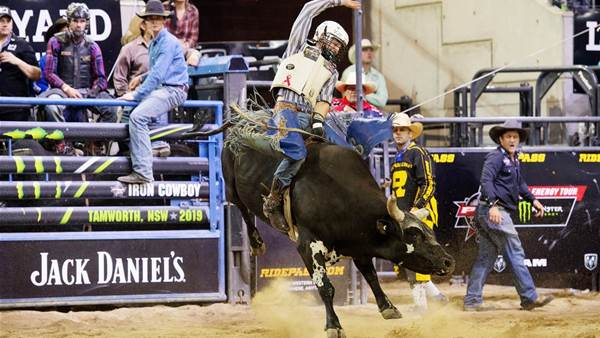 Bull riding best compete for cowboy honours