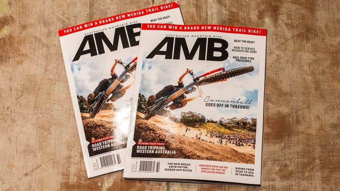 In this Issue - AMB #180