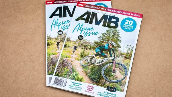 In this Issue - AMB #186