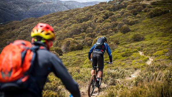Understanding insurance for mountain biking