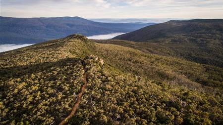 Sustainability and mountain biking